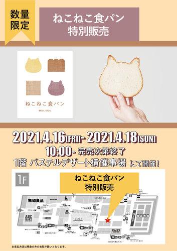 4/16・17・18 ねこねこ食パン